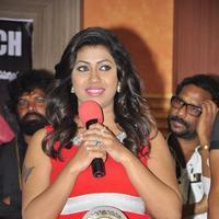 Geetanjali - Affair Movie Platinum Disc Function Stills