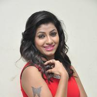 Geetanjali at Affair Movie Platinum Disc Function Photos