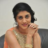 Dhanya Balakrishna at Bhale Manchi Roju Movie Audio Launch Photos