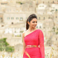 Rakul Preet Singh - Bruce Lee Movie Stills