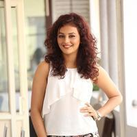 Actress Seerat Kapoor Latest Stills