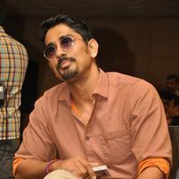 Actor Siddharth Press Meet Photos | 1205575