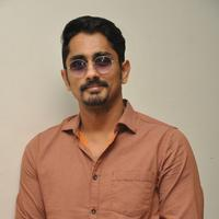Actor Siddharth Press Meet Photos | 1205578
