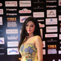 Sanam Shetty - SIIMA 2016 Awards Function Photos