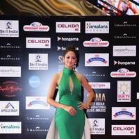 Shanvi Srivastava - SIIMA 2016 Awards Function Photos