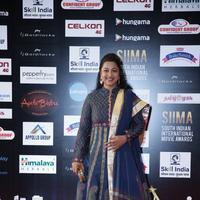 Radhika - SIIMA Awards 2016 Photos