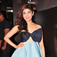 Pranitha at SIIMA 2016 Press Conference | Picture 1328758
