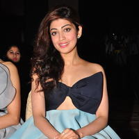 Pranitha at SIIMA 2016 Press Conference | Picture 1328769