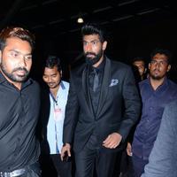 Rana Daggubati - 63rd Britannia Filmfare Awards South Event Photos
