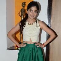 Poonam Kaur at Nannu Vadili Neevu Polevule Movie Audio Launch Stills