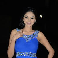 Sanam Shetty at Premikudu Movie Audio Launch Photos