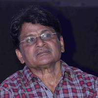 Raghubir Yadav - Press conference of film Club 60 Photos | Picture 658117