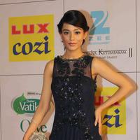 Amrita Rao - Zee Cine Awards 2014 Photos
