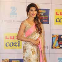Priyanka Chopra - Zee Cine Awards 2014 Photos