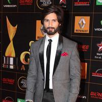 Shahid Kapoor - 9th Star Guild Awards Photos