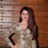 Kainaat Arora - 59th Idea Filmfare Awards 2013 Photos