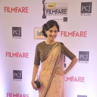 Amrita Rao - 59th Idea Filmfare Awards 2013 Photos