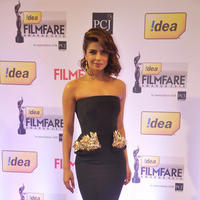 Priyanka Chopra - 59th Idea Filmfare Awards 2013 Photos