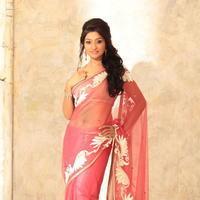 Neelima Rani Hot Photoshoot Pictures