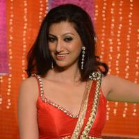 Hamsa Nandhini in Loukyam Movie Photos