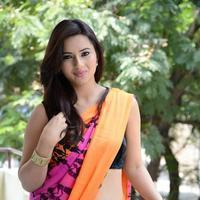 Isha Chawla Stunning Saree Photos